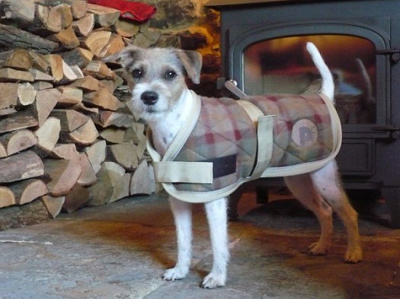 Check Quilted Dog Jacket (25cm)