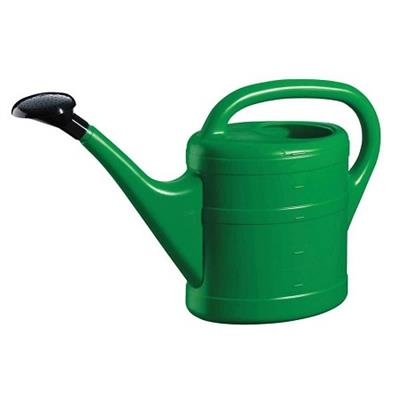 Green Plastic Watering Can with Rose (10ltr)