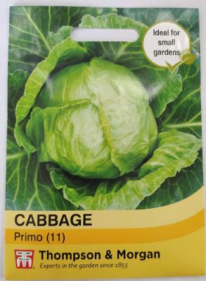 Cabbage Primo II