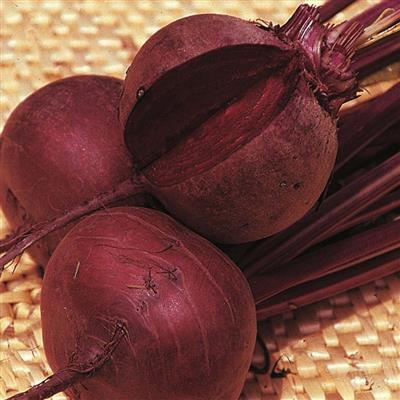 Beetroot Red Ace