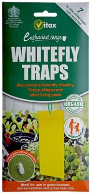 White Fly Trap