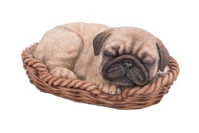 Pp Pug Puppy/Basket