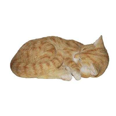 Sleeping Cat Ginger B