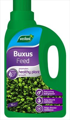 Buxus Concentrate Feed